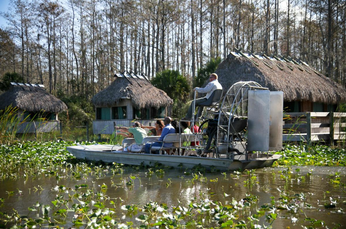 Everglades – Sumpene og naturen i Florida