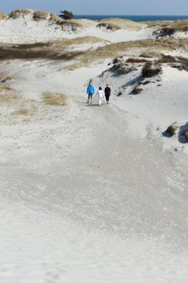 Krdhvid strandsand på Dueodde, så fint at det kan bruges i sandure