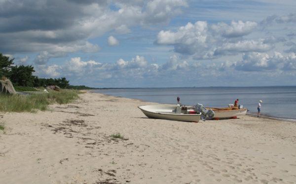 Om sommeren kridhvid strand, men når efteråret melder sig bliver Hanöbugten til Ålekysten
