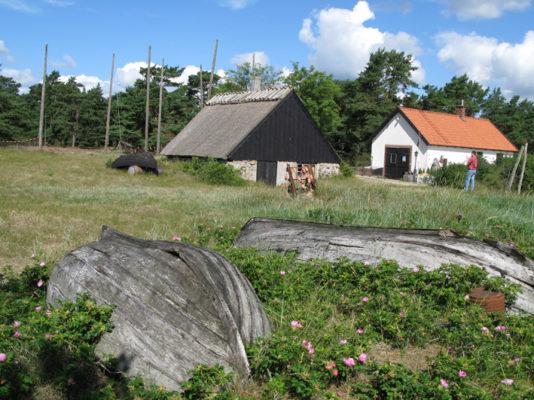 Åleboderne ligger tæt langs Hanö-bugten. I flere af dem inviteres man til ålegilde