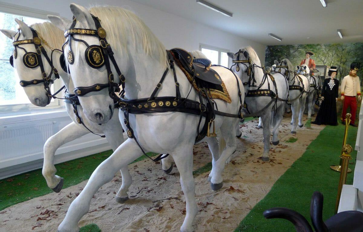 Dronningens heste kommer fra Tjekkiet