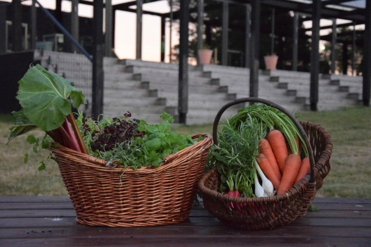 GAARDEN på Bornholm – det første madkulturhus