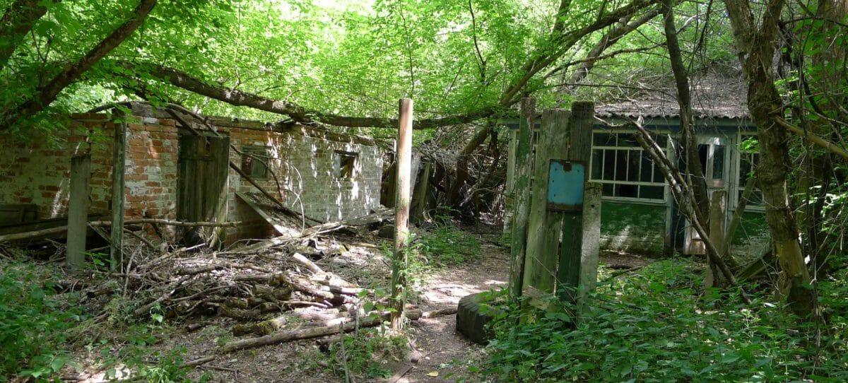 Besøg Tjernobyl og ruinerne efter verdens værste atomkraftulykke