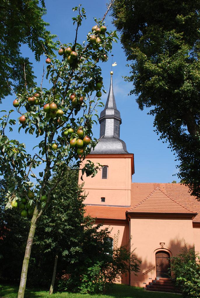 pæreeventyr