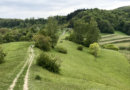 På kejserlig vandring i Sydtysklands vindistrikt